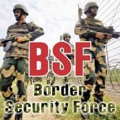 BSF (2)